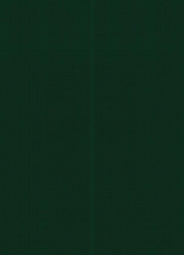 処女退魔師のカグヤが性欲たっぷりな妖魔に淫水で愛撫されて、屈辱的だけどイってしまう~wwwwwww【退魔士カグヤ クリムゾン エロ同人誌・エロ漫画】 (16)