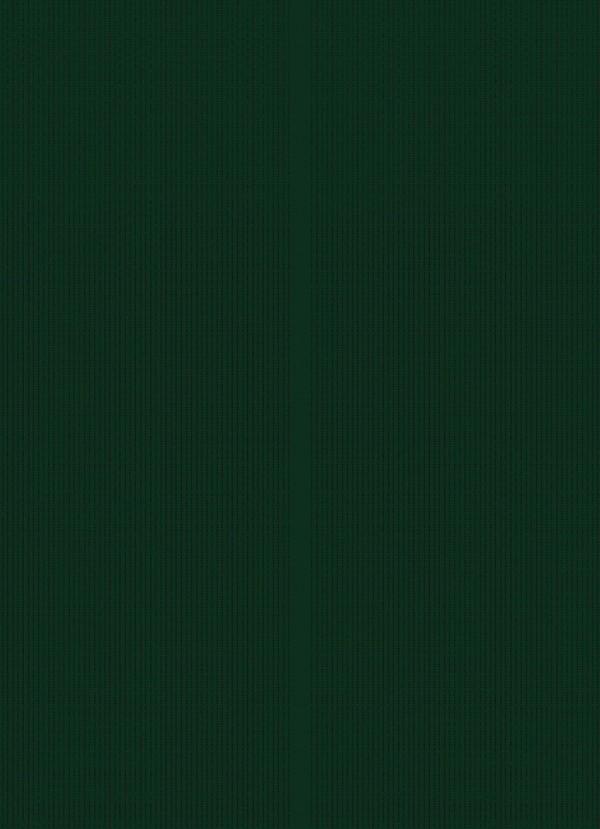 処女退魔師のカグヤが性欲たっぷりな妖魔に淫水で愛撫されて、屈辱的だけどイってしまう~wwwwwww【退魔士カグヤ クリムゾン エロ同人誌・エロ漫画】 (6)