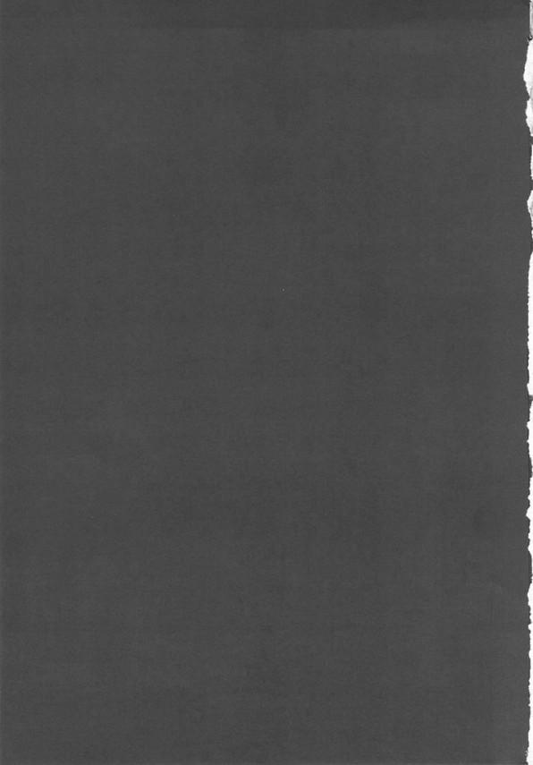 時間を止める呪文を使われちゃったビアンカが脇を散々舐められ脇コキされちゃう!催眠の呪文まで使われちゃってはめられまくる肉便器にwww【ドラクエ5 同人誌・エロ漫画】 (2)