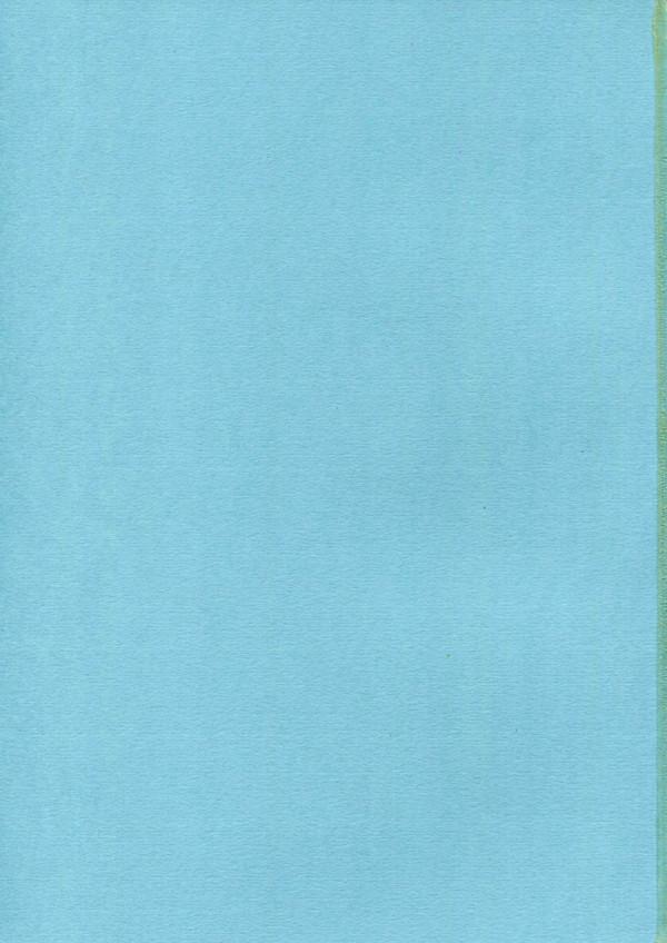 巨乳JKの絵里ちゃんがラブラブなお兄ちゃんとセックスしまくりンゴ♡【ラブライブ! エロ漫画・エロ同人】 pn003