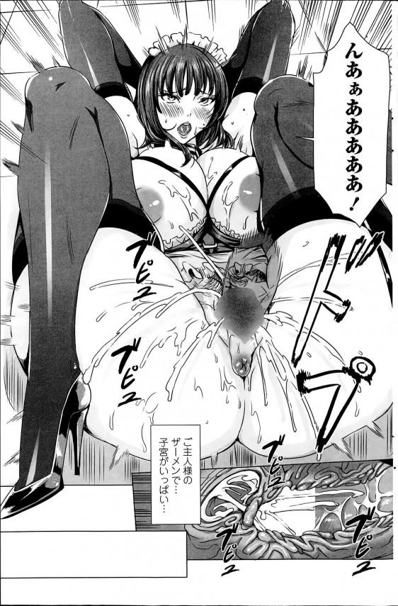 【エロ漫画】巨乳美人なメイドさんがご主人様にエッチなイジワルされるよ~【飛燕 エロ同人】_(15)