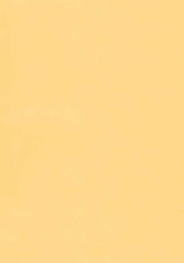 小学五年生の魔法少女サーヴァントのイリヤがマスターさんと魔力供給する話www【FGO エロ漫画・エロ同人】 (3)