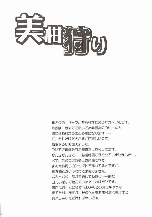 美柑狩り (To LOVEる -とらぶる-) (3)