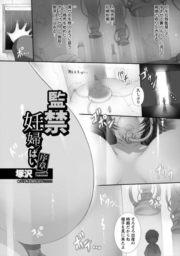 [塚沢] 監禁妊婦っぱい 序章 (1)