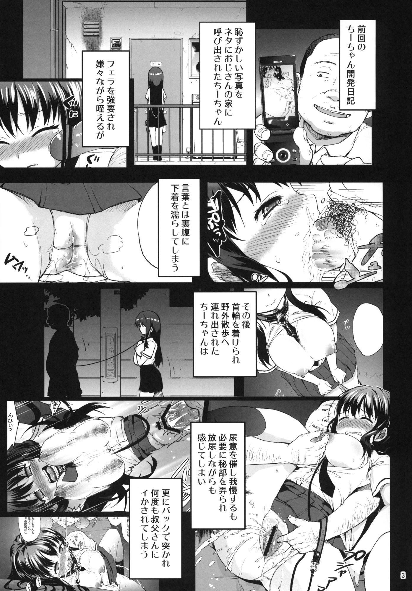 [夢茶会] ちーちゃん開発日記3 (2)
